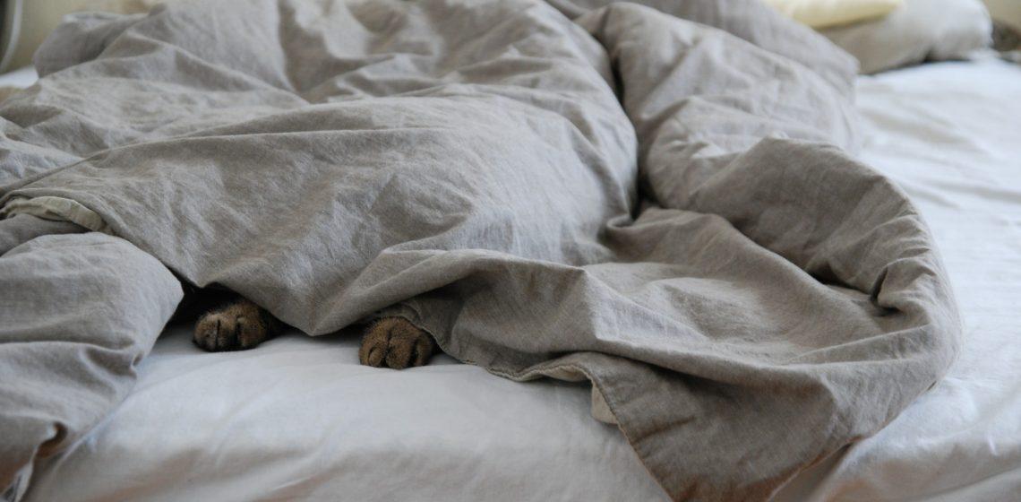 Co zrobić ze zniszczonym łóżkiem
